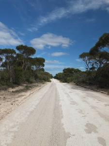 Three Chains Road, some sections were like this, other sections were red pea gravel of deep sand.