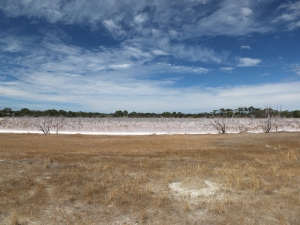 Kangaroo Island is spotted with salt lakes despite the coastal location. I'd love to know how they form.