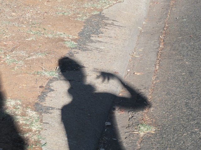 Every shadow was bent and distorted!