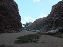 The sandy floor of redbank gorge is testament to the massive floods. Only River Red Gums survive, and not always.