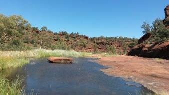 PV Waterhole