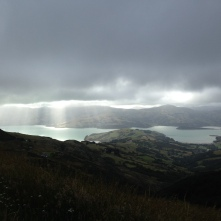 Akaroa is beautiful. Go there!