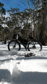 My ECR standing by itself in the snow. The snow was firm enough to hold it up right, but not enough to ride on!