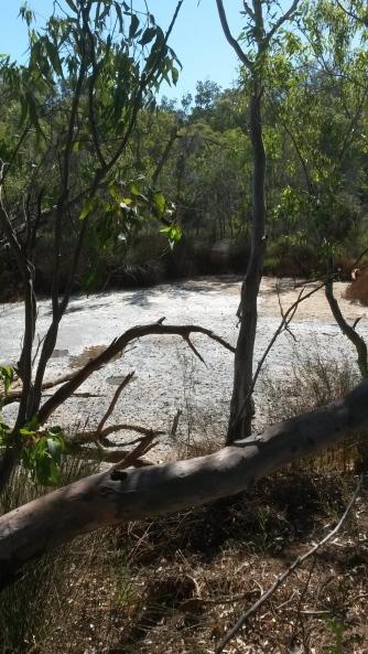 Ellendale Dry