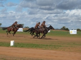 3rd light horse at the Valley View Airshow near Geraldton.