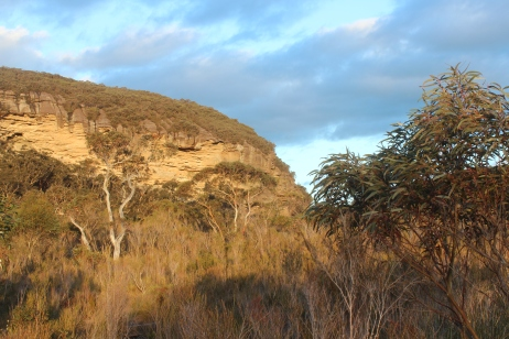 Sunset in Burrumbeet Brook